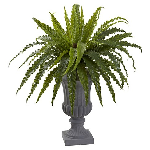"30"" Birdsnest Fern Artificial Plant with Urn - Nearly Natural - image 1 of 1"