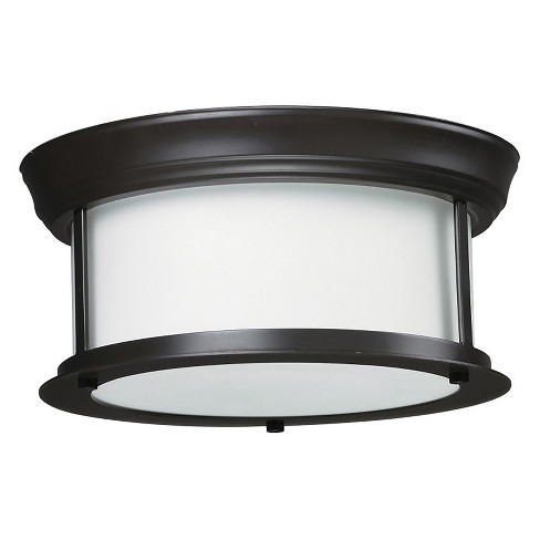 Ceiling Lights with Matte Opal Glass (Set of 2) - Z-Lite - image 1 of 1