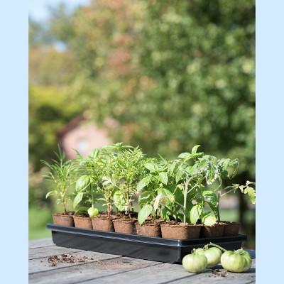 "3-1/2"" Square Biodegradable Pots & Tray Set - Gardener's Supply Company"