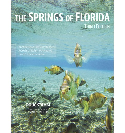 Springs of Florida (Paperback) (Doug Stamm) - image 1 of 1