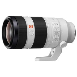 Sony FE 100-400mm f/4.5-5.6 GM OSS E-Mount Lens