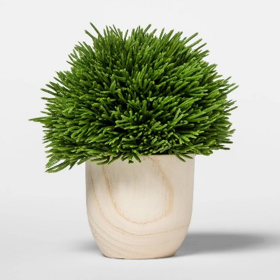 "5.2"" x 4.3"" Artificial Cypress Arrangement in Wooden Pot Green/Natural - Threshold™"