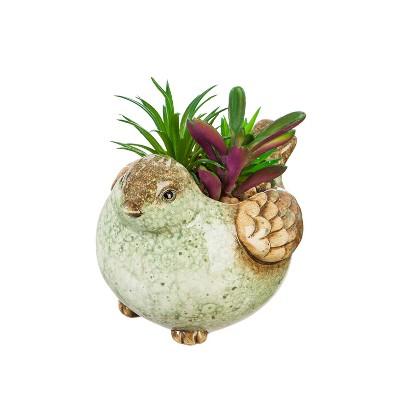 Evergreen Cypress Home Ceramic Bird Planter with Succulent