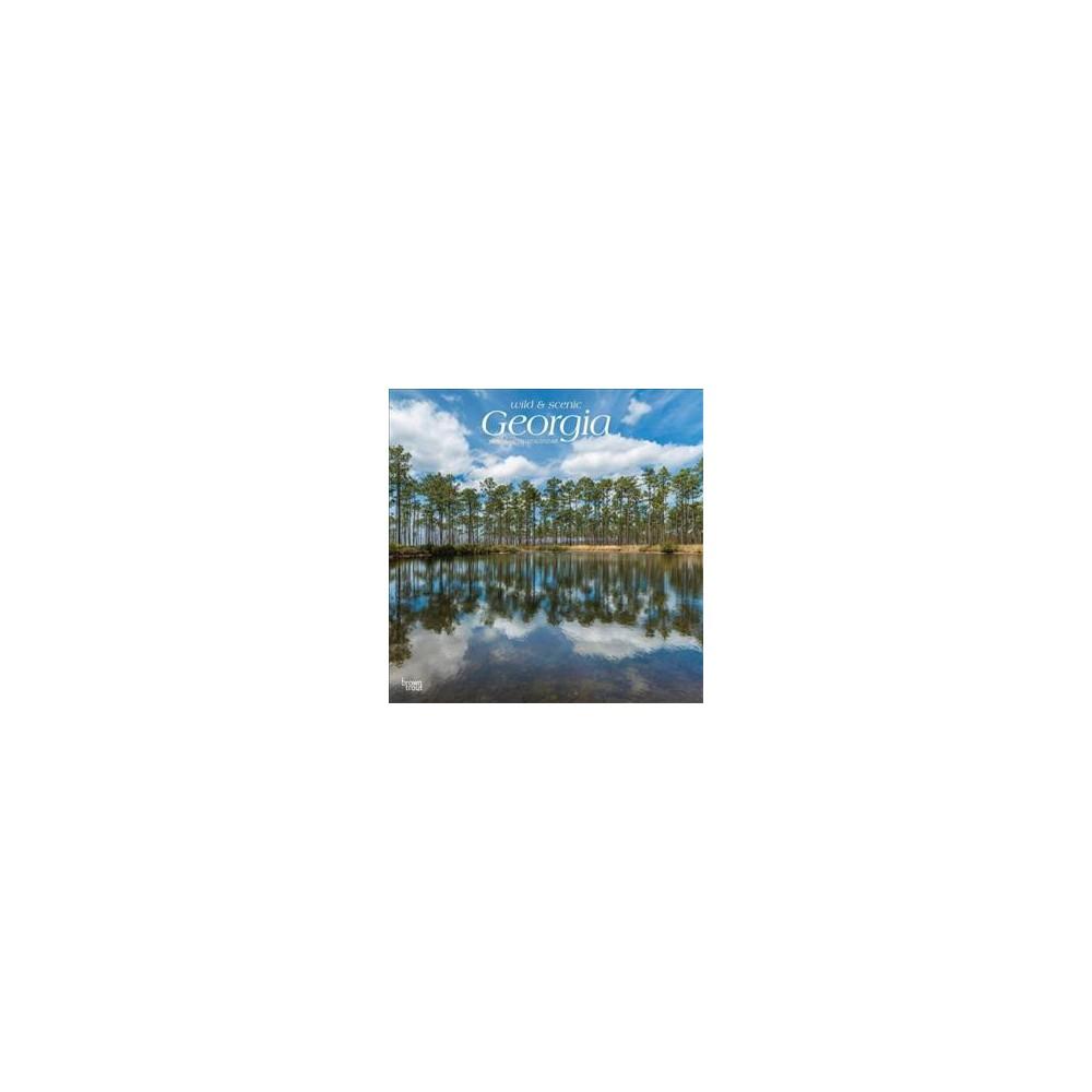 Wild & Scenic Georgia 2019 Calendar - (Paperback)