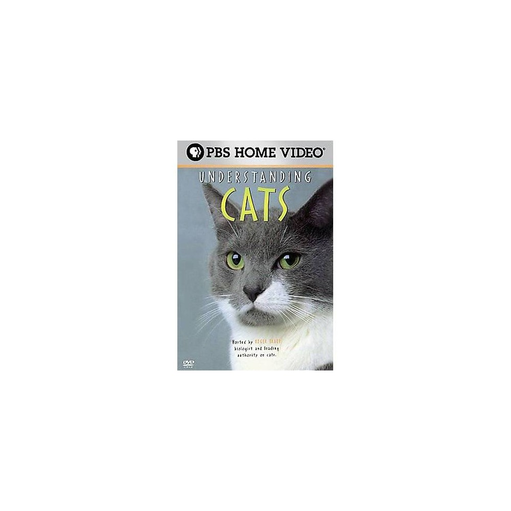 Understanding Cats (Dvd), Movies