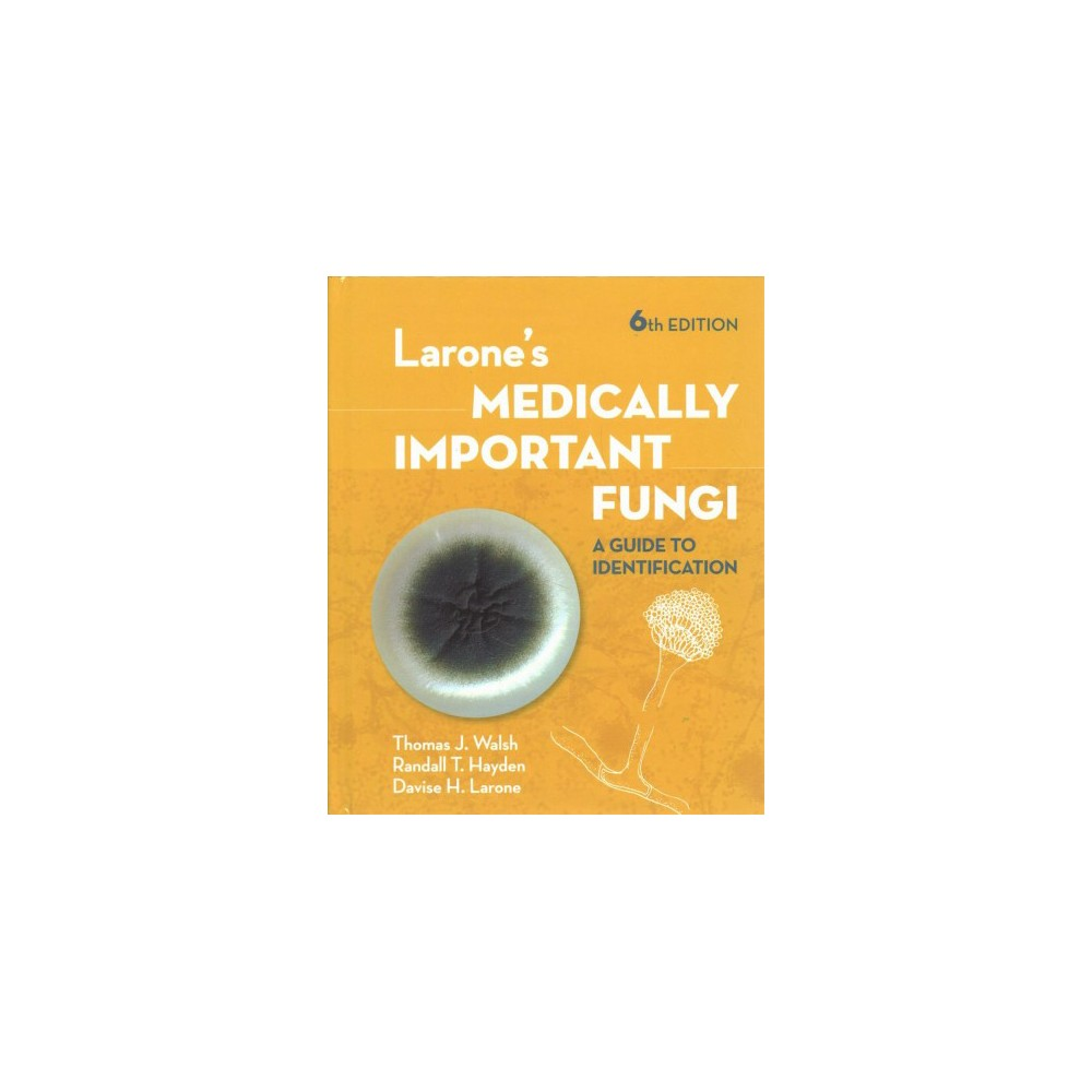 Larone's Medically Important Fungi : A Guide to Identification - 6 (Hardcover)