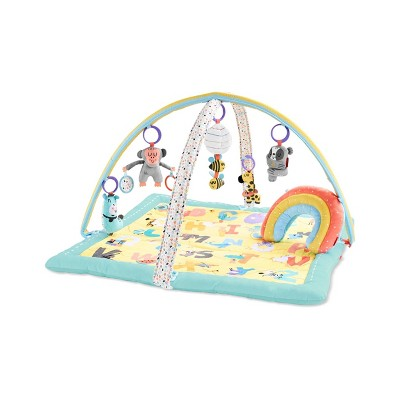 Skip Hop Abc Me Activity Gym