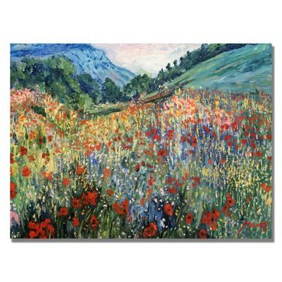 Trademark Fine Art 18  x 24  Field of Wild Flowers' Canvas Art