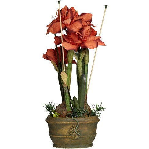 """Kensington Hill Rust Triple Amaryllis 25"""" High Faux Flowers in Oval Pot - image 1 of 4"""