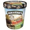 Ben & Jerry's Peanut Butter Half Baked Non-Dairy Frozen Dessert - 16oz - image 2 of 5