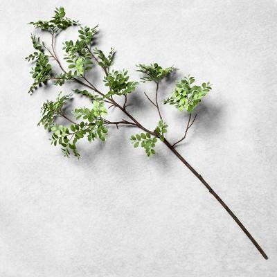 Faux Agalaia Fern Stem - Hearth & Hand™ with Magnolia
