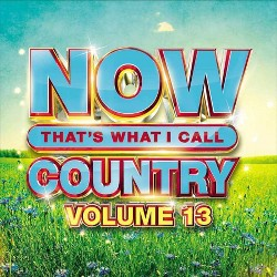 Various Artists - NOW Country Vol. 13 (CD)
