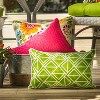 "18.5"" 2pk Paragon Raspberry Throw Pillows Pink - Pillow Perfect - image 2 of 4"