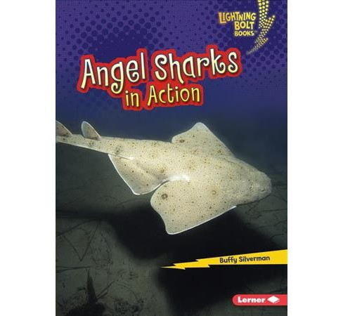 Angel Sharks in Action -  (Lightning Bolt Books: Shark World) by Buffy Silverman (Paperback) - image 1 of 1