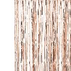 Fringe Curtain Party Decorations Rose Gold - image 2 of 2