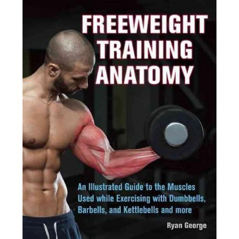 Freeweight Training Anatomy An Illustrated Guide To The Muscles