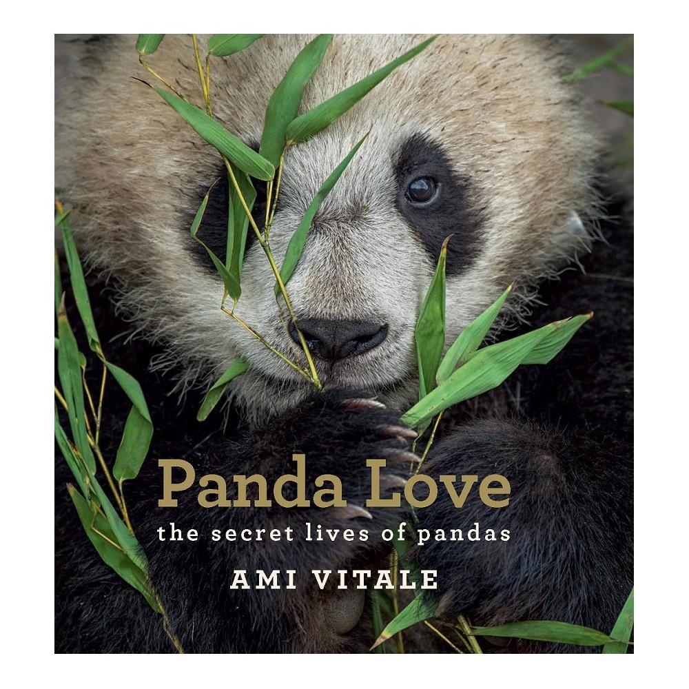 Panda Love : The Secret Lives of Pandas - (Hardcover)
