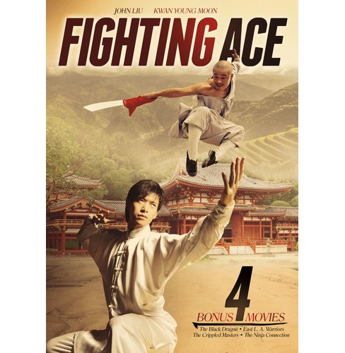 Fighting Ace (DVD) - image 1 of 1