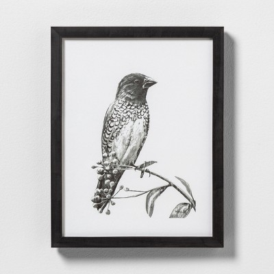 11  X 14  Sketched Bird on Branch Wall Art with Black Wood Frame - Hearth & Hand™ with Magnolia