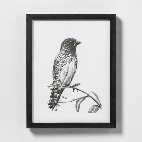 Sketched Bird on Branch Wall Art with Frame - Hearth & Hand™ with Magnolia - image 1 of 1