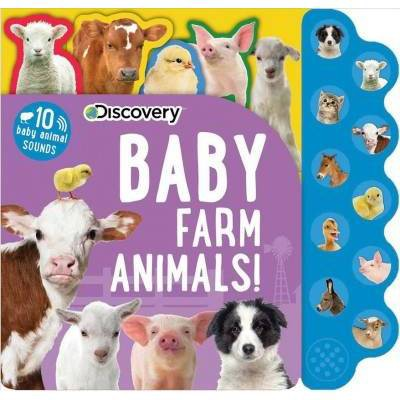 Discovery - Baby Farm Animals! - (10-button Sound Books)by Thea Feldman (Hardcover)