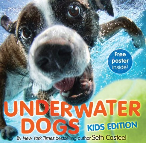 Underwater Dogs (Hardcover) by Seth Casteel - image 1 of 1