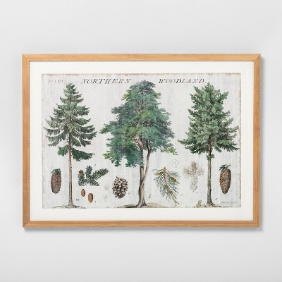 25.75x18.75 Woodland Trees Framed Art - Hearth & Hand™ with Magnolia