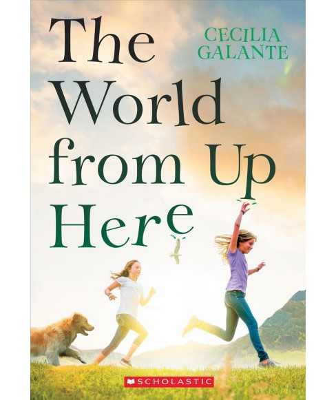 World from Up Here (Paperback) (Cecilia Galante) - image 1 of 1
