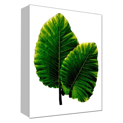 """Fresh Leaf Decorative Canvas Wall Art 11""""x14"""" - PTM Images - image 1 of 1"""