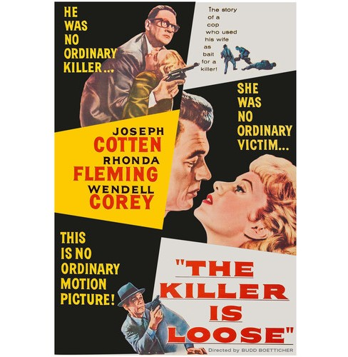 Killer Is Loose (DVD) - image 1 of 1
