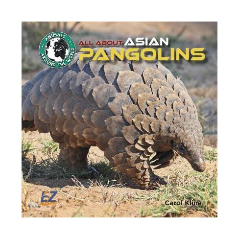 All About Asian Pangolins -  (Animals Around the World: Asia) by Carol Kline (Hardcover) - image 1 of 1