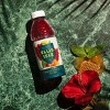 Ellis Isle Sweet Tea - 16.9 fl oz Bottle - image 4 of 4