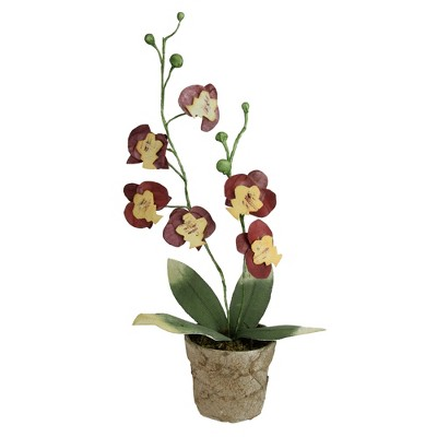 """Northlight 14"""" Orchid Flower Artificial Potted Plant - Red/Yellow"""