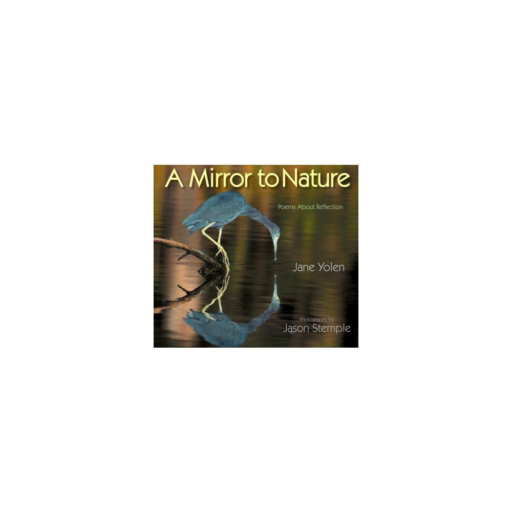 Mirror to Nature : Poems About Reflection - Reprint by Jane Yolen (Paperback)