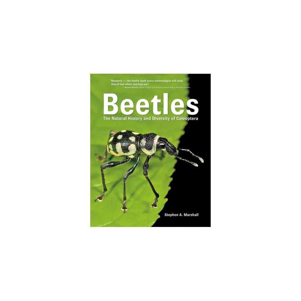 Beetles : The Natural History and Diversity of Coleoptera - by Stephen A. Marshall (Hardcover)