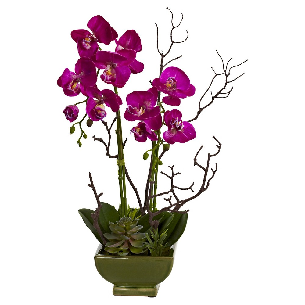 Nearly Natural Orchid & Succulent Floral Arrangement, Pin...