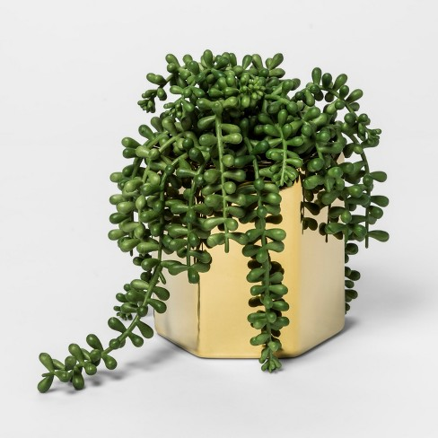 faux string of pearls succulent plant in gold pot. Black Bedroom Furniture Sets. Home Design Ideas