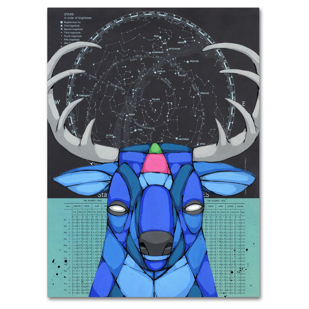 Starbuck' by Ric Stultz Ready to Hang Canvas Wall Art - Blue