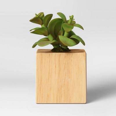 Artificial Succulent Magnet - Project 62™