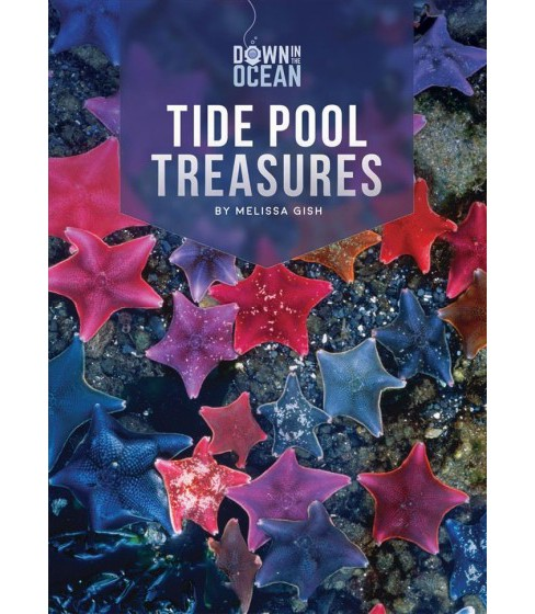 Tide Pool Treasures -  (Down in the Ocean) by Melissa Gish (Paperback) - image 1 of 1