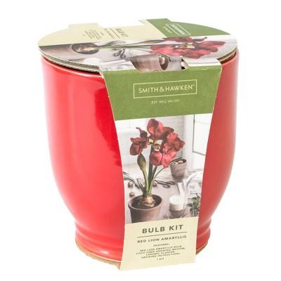Red Amaryllis Grow Kit - Red - Smith & Hawken™