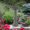 "17"" Bird Bath with Pedestal Charcoal - Bloem - image 4 of 4"