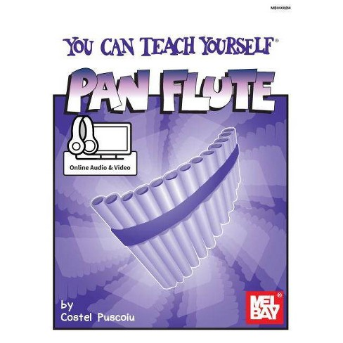 You Can Teach Yourself Pan Flute - (Paperback) - image 1 of 1