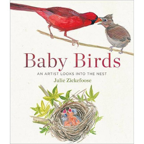 Baby Birds - by  Julie Zickefoose (Hardcover) - image 1 of 1