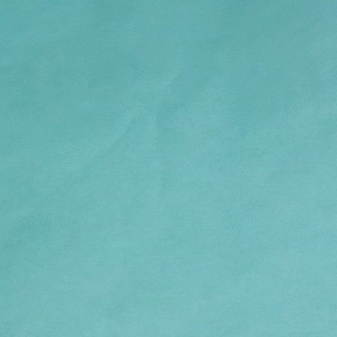 8ct Teal Tissue Paper - Spritz™ - image 1 of 1