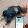 Owlet Smart Sock 3 Baby Monitor with Oxygen & Heart Rate - image 3 of 4