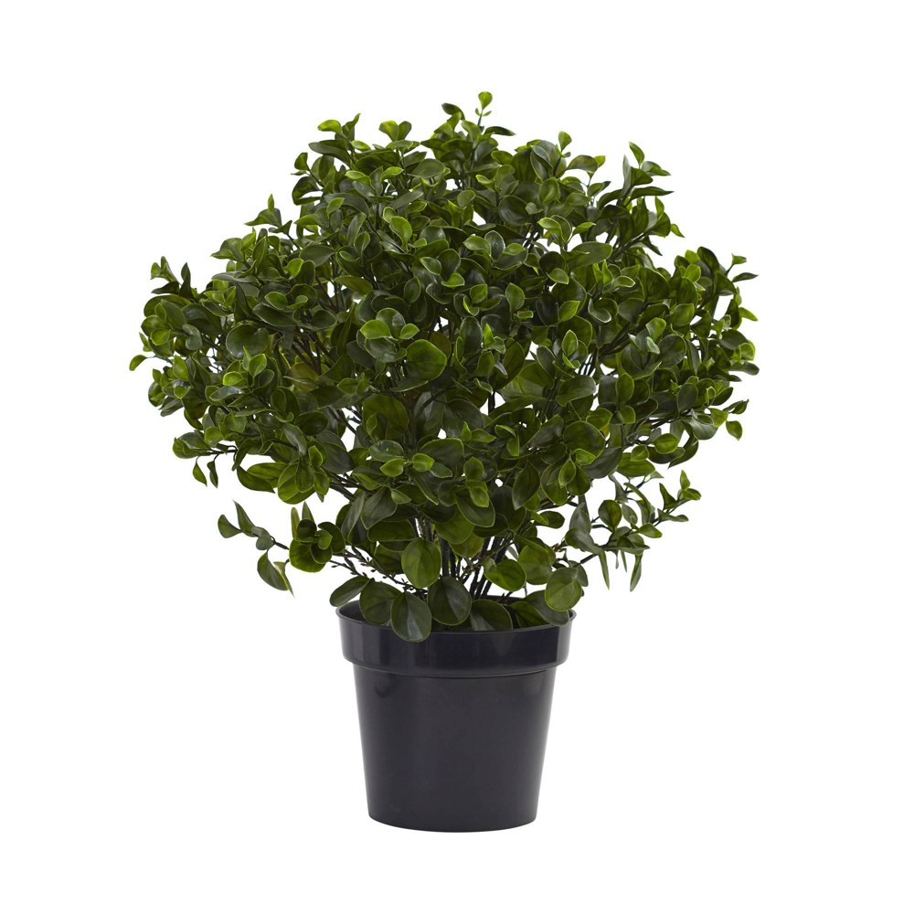 28 34 Peperomia Plant Nearly Natural