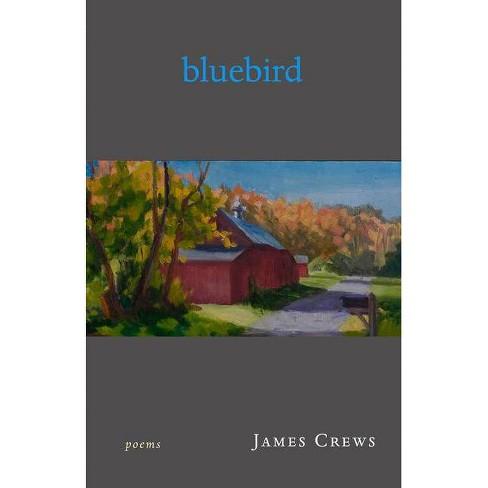 Bluebird - by  James Crews (Paperback) - image 1 of 1