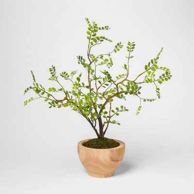 """17"""" x 12"""" Artificial Sophora in Wooden Pot Green/Natural - Threshold™"""