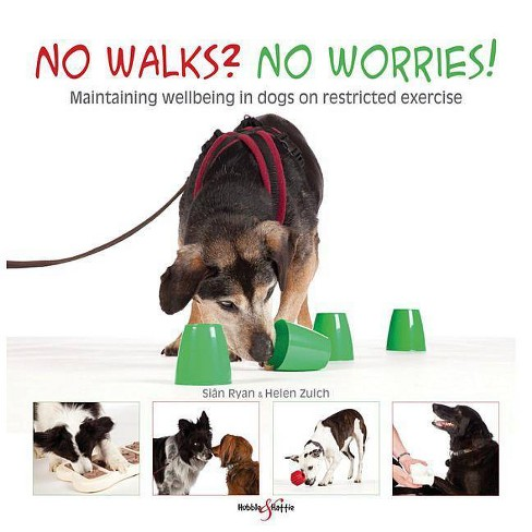 No Walks? No Worries! - by  Sian Ryan & Helen Zulch (Paperback) - image 1 of 1